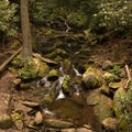 Water features along the hike.- Woodward Falls via Walk Jones Wildlife Sanctuary