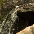 A small waterfall along the trail.- Woodward Falls via Walk Jones Wildlife Sanctuary