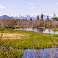 Looking east toward the Gros Ventre Mountains.- Moose-Teton Road Ponds