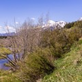 Beyond the main overlook, wetlands extend for a few miles along the road.- Moose-Teton Road Ponds