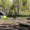 A typical tent site.- Gros Ventre Campground