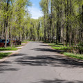 A typical loop road.- Gros Ventre Campground