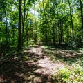 View of trail past boardwalk.- Wall Doxey State Park Campground