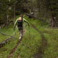 Marshy spots are to be expeted through early summer.- Lewis Lake to Shoshone Lake Loop