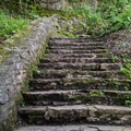Steps leading to the parking area.- Chittenango Falls State Park
