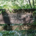 A rare and endangered species of snail lives here.- Chittenango Falls State Park