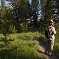 The hike is an easy stroll through meadows and forest.- Storm Point