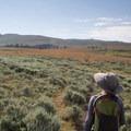 The hike climbs gradually to the summit of Amethyst Mountain.- Specimen Ridge Trail