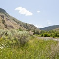 Lava creek offers many wide open areas to take breaks.- Undine Falls Via Lava Creek Trailhead
