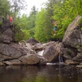 Taking the plunge.- Fern Gully Swimming Hole