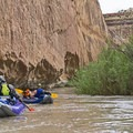 The undermined sandstone walls.- San Rafael River: The Little Grand Canyon