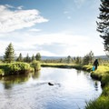 Filtering water from the Little Firehole River.- Firehole Meadows: Biscuit Basin to Freight Road