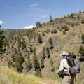 Aproaching the canyon.- Black Canyon of the Yellowstone