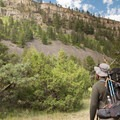 The walls of the Black Canyon are full of dark shale.- Black Canyon of the Yellowstone