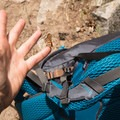 A friendly butterfly hitched a ride on our packs for miles.- Black Canyon of the Yellowstone
