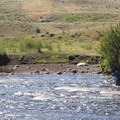 Fording Hellroaring Creek.- Black Canyon of the Yellowstone