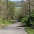 Short paved downhill to get to Rose Island.- Rose Island