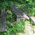 The oldest structure in the park, an intact picnic table from the 1880s. Watch out for the lead paint.- Rose Island