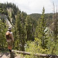 Hiking the North Rim Trail.- Brink of Lower Falls to Lower Lookout Point