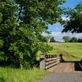 A bridge on First Manassas Trail.- Manassas National Battlefield Park