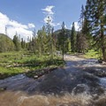 The large creek running through the campground.- Ledgefork Campground