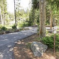 A campsite in Ledgefork Campground.- Ledgefork Campground