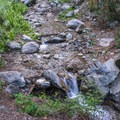 Flowing creek near the trailhead.- Three T's Trail (Timber , Telegraph + Thunder Mountain)