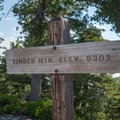 Timber Mountain, a short distance away from the saddle.- Three T's Trail (Timber , Telegraph + Thunder Mountain)
