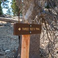 Three Tee's Trail.- Three T's Trail (Timber , Telegraph + Thunder Mountain)