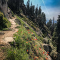 After Panther Gap, the trial meanders in and out of incredible views.- Alta Peak