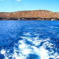 A boat departing from Molokini Crater. Photo by Tony Webster (CC 2.0).- Molokini Crater Snorkeling + Diving Tour