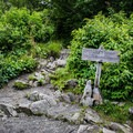Approaching the Bunion.- Appalachian Trail: Newfound Gap to Charlie's Bunion