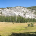 Half Moon Meadow (8,860 ft), a beautiful place to rest before grinding up the final series of switchbacks to Ten Lakes Pass (9,660 ft).- Ten Lakes