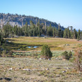 An alpine meadow at Ten Lakes Pass in Yosemite National Park.- Ten Lakes