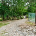 Short trail to the river.- Lady's Bathtub Swimming Area