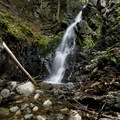Mossy Cascade Falls.- Mossy Cascade
