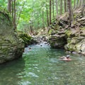 Swimmers in the main gorge.- 20 Foot Hole