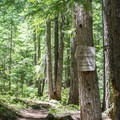 The trail goes throught the Three Sisters Wilderness.- Erma Bell Lakes