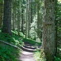 Trail to Erma Bell Lakes.- Erma Bell Lakes