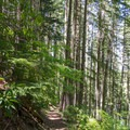 Trail leading to Erma Bell Lakes.- Erma Bell Lakes