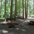 Typical campsite at Skookum Creek Campground.- Skookum Creek Campground