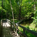 A footbridge crosses the Vloman Kill Tributary, which flows through the property.- Five Rivers Environmental Education Center