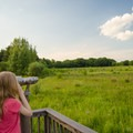 A young visitor looks for birds through a pair of fixed binoculars on a viewing platform.- Five Rivers Environmental Education Center