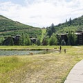 The trails offer a great place for a walk.- Deer Valley Ponds Loop