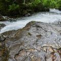 Stromatolites can be found everywhere!- Siyeh Creek to St. Mary's Lake via Reynolds Creek