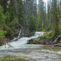 Wood hazard in a section of the first gorge on Reynolds Creek.- Siyeh Creek to St. Mary's Lake via Reynolds Creek