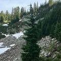 Beautiful section of trail.- Hunts Cove + Coyote Lake Loop