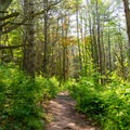 Beautiful scenery surrounds the trail.- Vroman's Nose