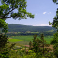 The views begin immediately as the trail levels out along the rim.- Vroman's Nose