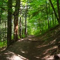 The trail climbs steadily uphill most of the way.- Vroman's Nose